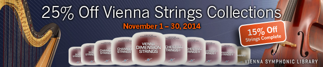 Banner 25% OFF on VSL String Collections